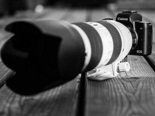 Zwei Wochen Urlaub mit der Canon EOS M50