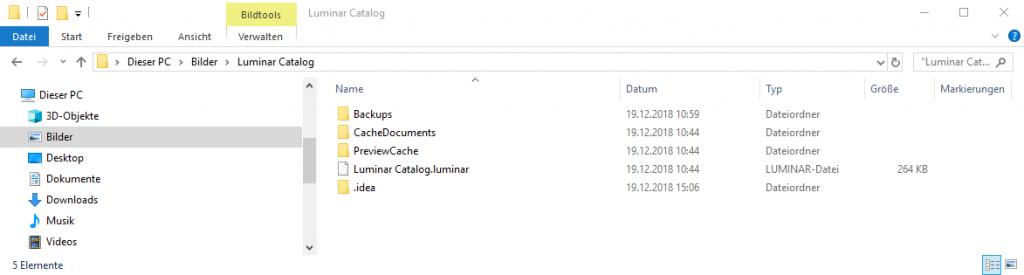Luminar 3 Katalog im Windows Explorer