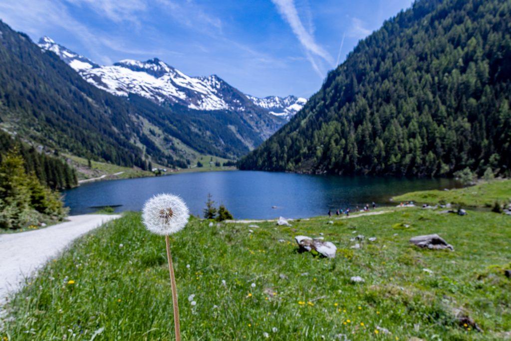 Wanderung Steiermark: Riesachfälle und Riesachsee