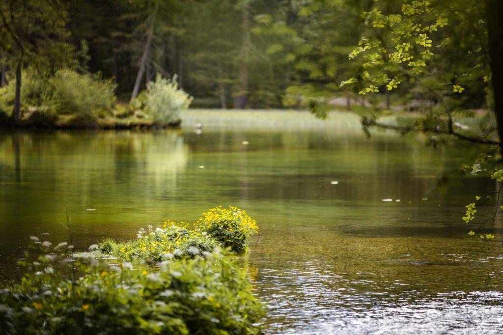 Wanderung Steiermark: Rund um den Grünen See