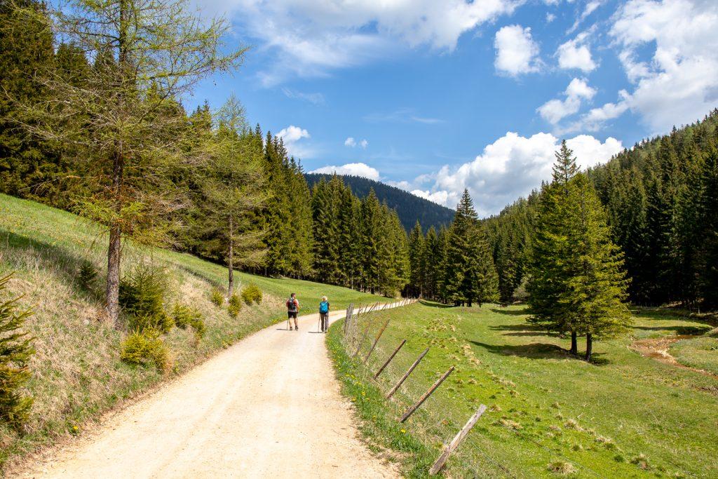 Wanderung Steiermark: Teichalmsee - Tyrnauer Alm