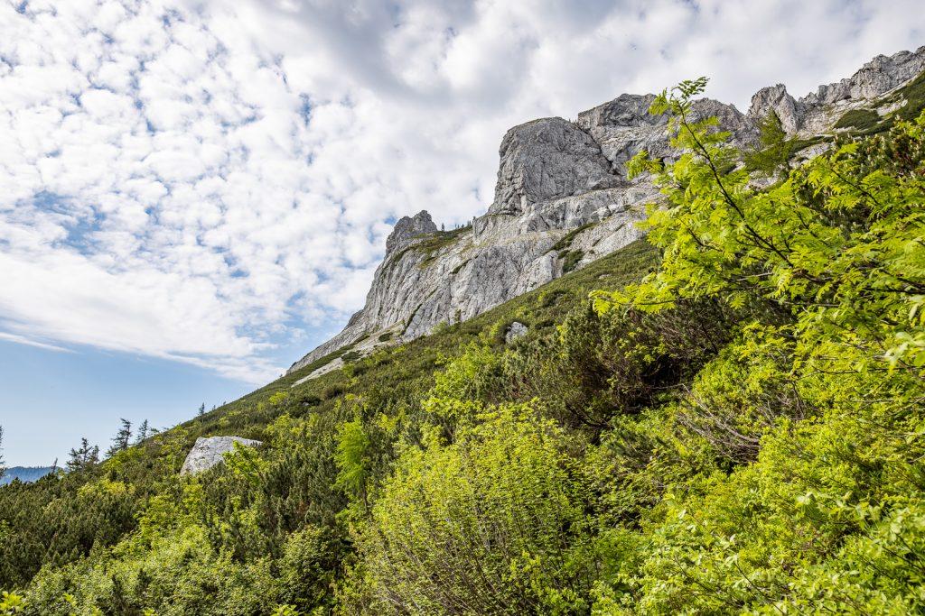 Wanderung Steiermark: Vom Bodenbauer zum Sackwiesensee