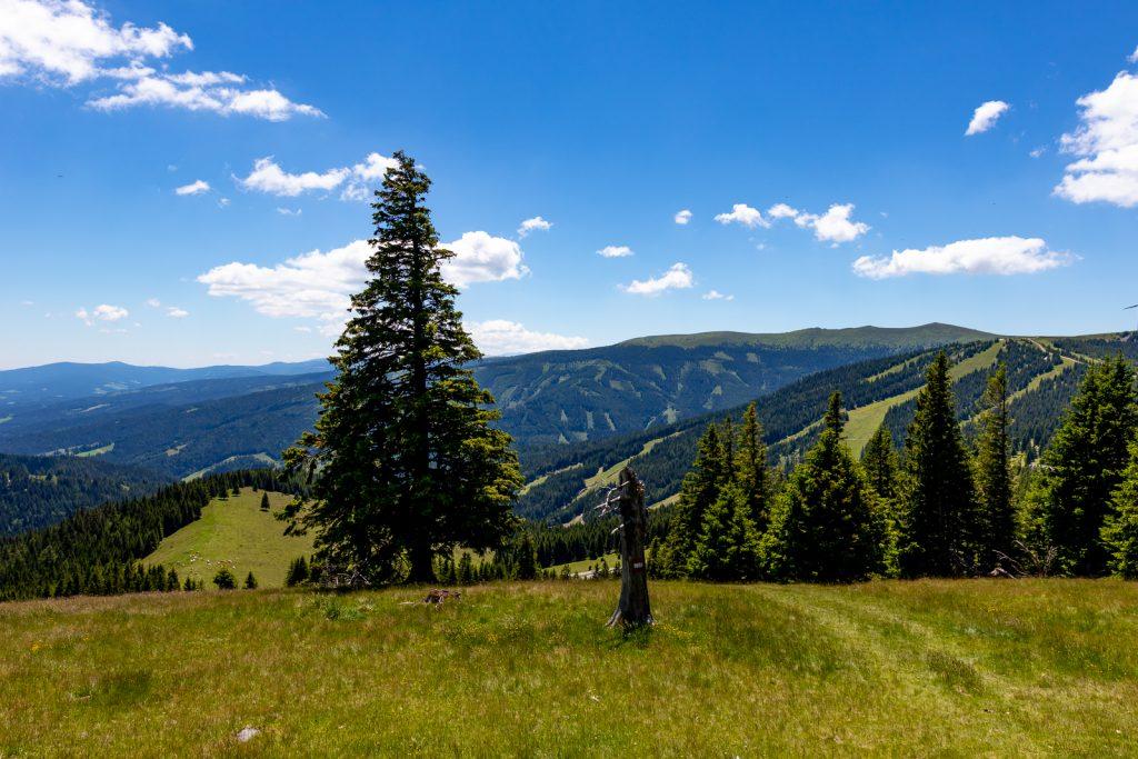 Wanderung Steiermark: Vom Salzstieglhaus auf den Rappoldkogel