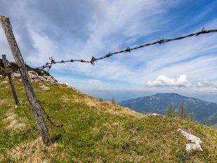 Auf der linken Seite befindet sich ein Zaunsteher mit Stacheldraht quer über den Bildschirm. Im Vordergrund ist Wiese mit kleinen Blümchen. Im Hintergrund sieht man eine Berglandschaft und eine sehr intensive Wolkengebung.