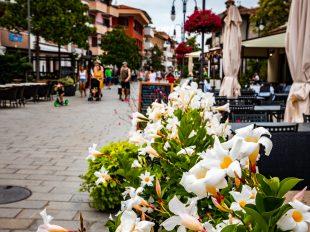 Touristenmeile in Grado mit Blumen im Vordergrund. Dahinter flanierende Menschen und Gastgärten.