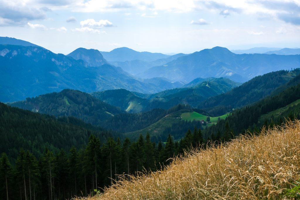 Hier siehst du eine weitwinkelige Aufnahme vom Grazer Bergland. Im Vordergrund ist reifes Getreide, dahinter erstrecken sich viele Hügel, die mit der Tiefe immer höher werden.